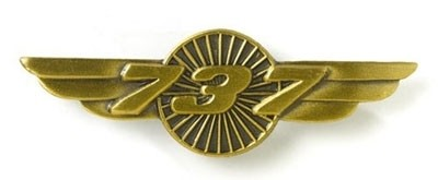 Boeing 737 Wings Pin